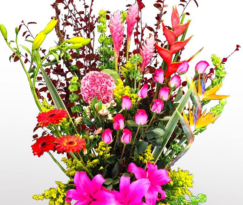 Disfruta más tus flores